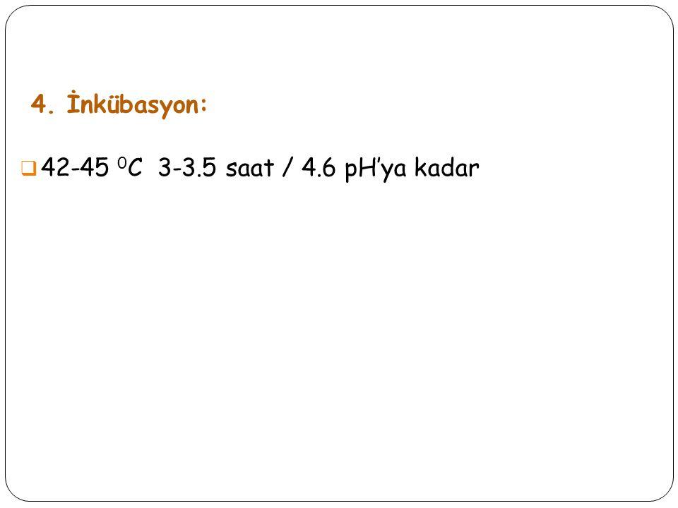 4. İnkübasyon:  42-45 0 C 3-3.5 saat / 4.6 pH'ya kadar