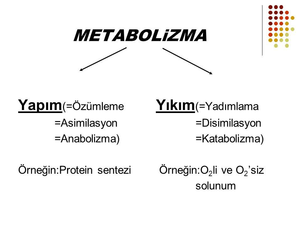 METABOLiZMA Yapım (=Özümleme =Asimilasyon =Anabolizma) Örneğin:Protein sentezi Yıkım (=Yadımlama =Disimilasyon =Katabolizma) Örneğin:O 2 li ve O 2 'si