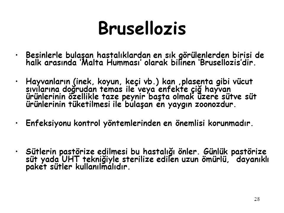 28 Besinlerle bulaşan hastalıklardan en sık görülenlerden birisi de halk arasında 'Malta Humması' olarak bilinen 'Brusellozis'dir. Hayvanların (inek,