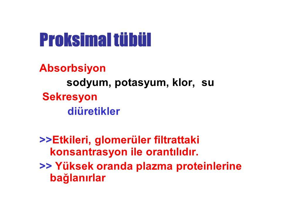 Proksimal tübül Absorbsiyon sodyum, potasyum, klor, su Sekresyon diüretikler >>Etkileri, glomerüler filtrattaki konsantrasyon ile orantılıdır. >> Yüks