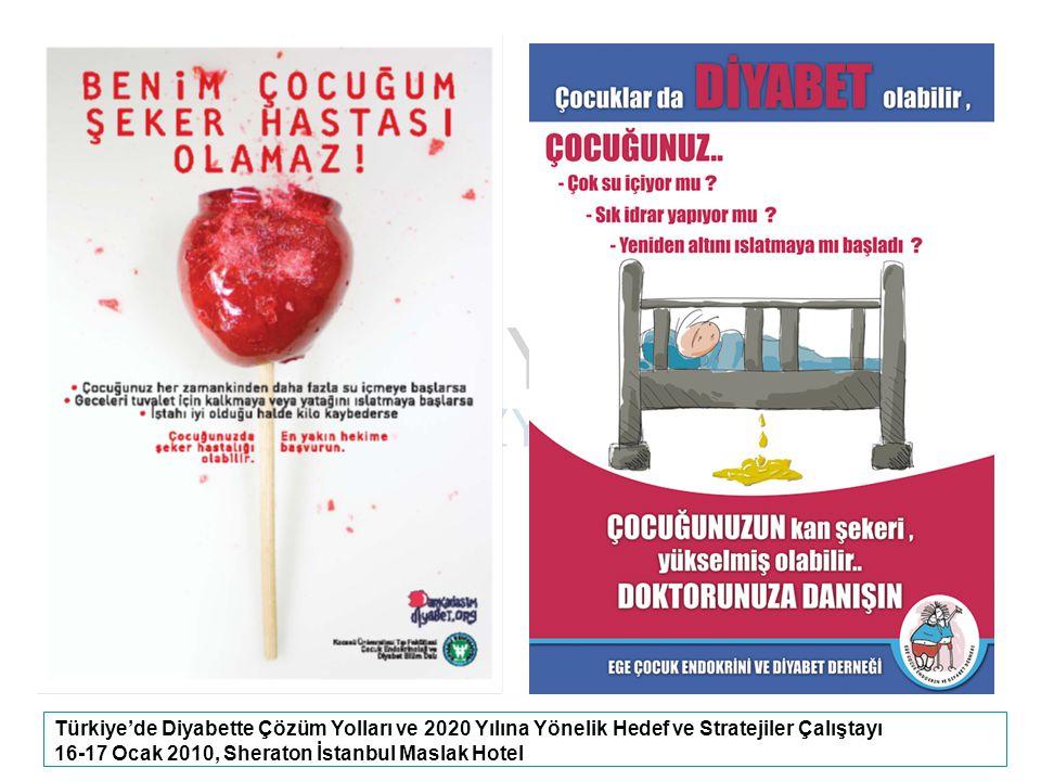 Türkiye'de Diyabette Çözüm Yolları ve 2020 Yılına Yönelik Hedef ve Stratejiler Çalıştayı 16-17 Ocak 2010, Sheraton İstanbul Maslak Hotel