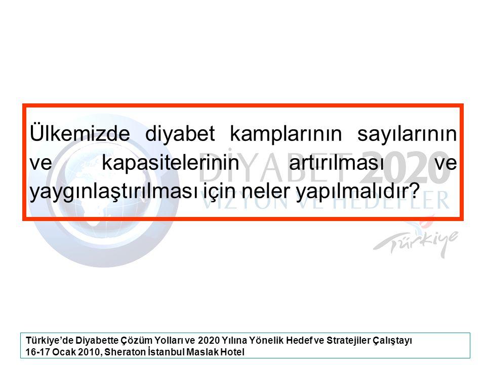 Türkiye'de Diyabette Çözüm Yolları ve 2020 Yılına Yönelik Hedef ve Stratejiler Çalıştayı 16-17 Ocak 2010, Sheraton İstanbul Maslak Hotel Ülkemizde diy