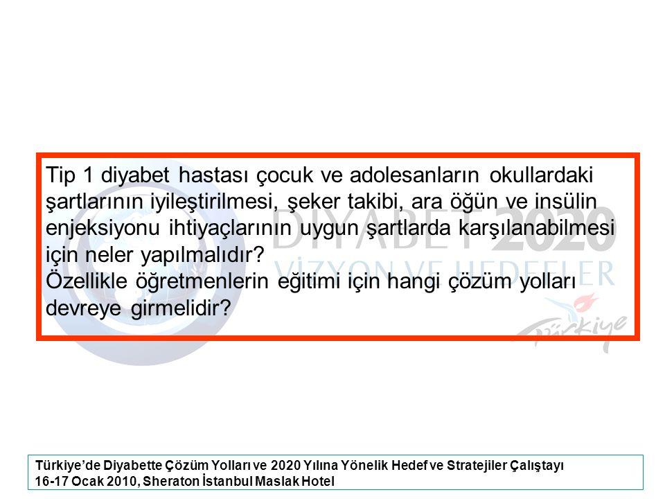 Türkiye'de Diyabette Çözüm Yolları ve 2020 Yılına Yönelik Hedef ve Stratejiler Çalıştayı 16-17 Ocak 2010, Sheraton İstanbul Maslak Hotel Tip 1 diyabet