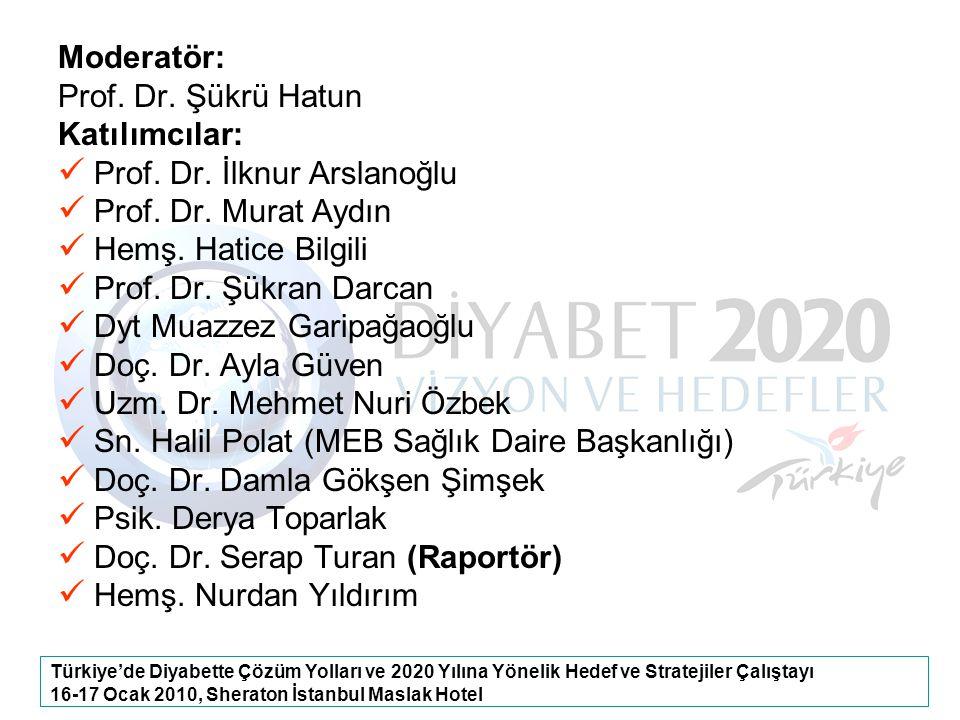 Türkiye'de Diyabette Çözüm Yolları ve 2020 Yılına Yönelik Hedef ve Stratejiler Çalıştayı 16-17 Ocak 2010, Sheraton İstanbul Maslak Hotel Moderatör: Pr