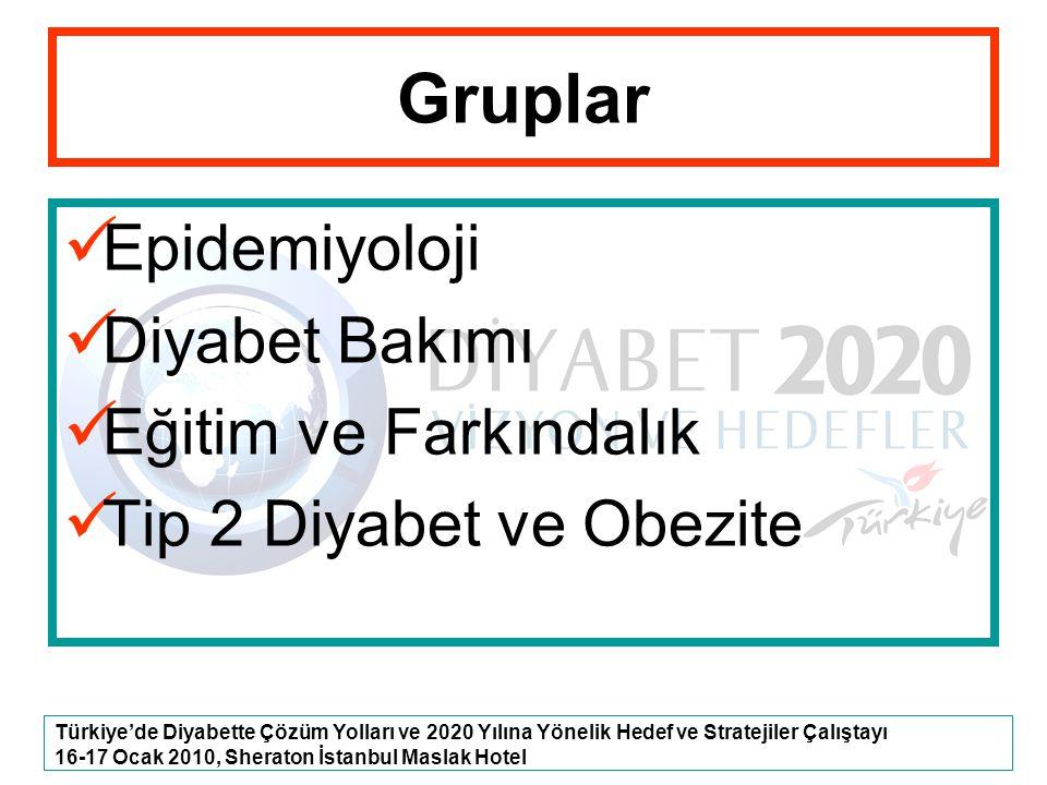 Türkiye'de Diyabette Çözüm Yolları ve 2020 Yılına Yönelik Hedef ve Stratejiler Çalıştayı 16-17 Ocak 2010, Sheraton İstanbul Maslak Hotel Gruplar Epide