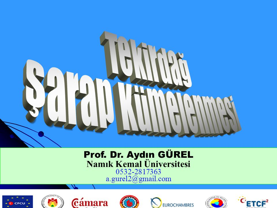 Prof. Dr. Aydın GÜREL Namık Kemal Üniversitesi 0532-2817363 a.gurel2@gmail.com