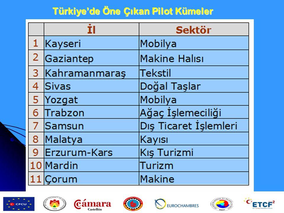 http://www.smenetworking.gov.tr/detay.cfm?MID=50 Türkiye'de Öne Çıkan Pilot Kümeler