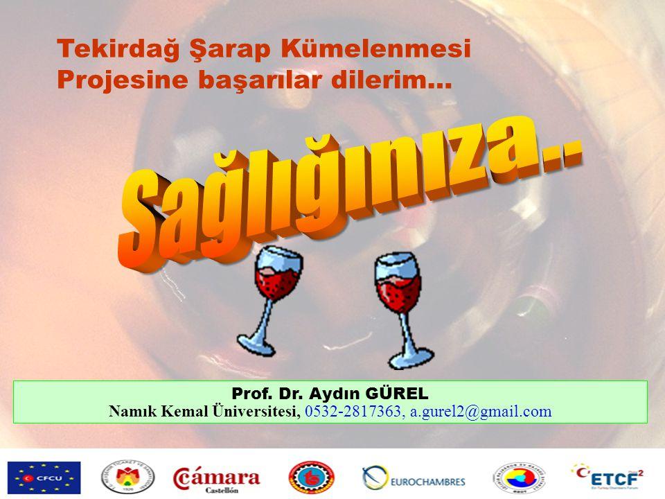 Tekirdağ Şarap Kümelenmesi Projesine başarılar dilerim… Prof. Dr. Aydın GÜREL Namık Kemal Üniversitesi, 0532-2817363, a.gurel2@gmail.com