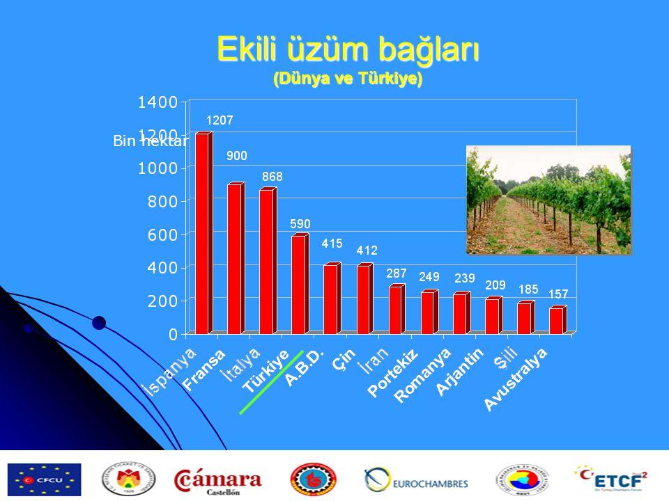 Ekili üzüm bağları (Dünya ve Türkiye) Bin hektar