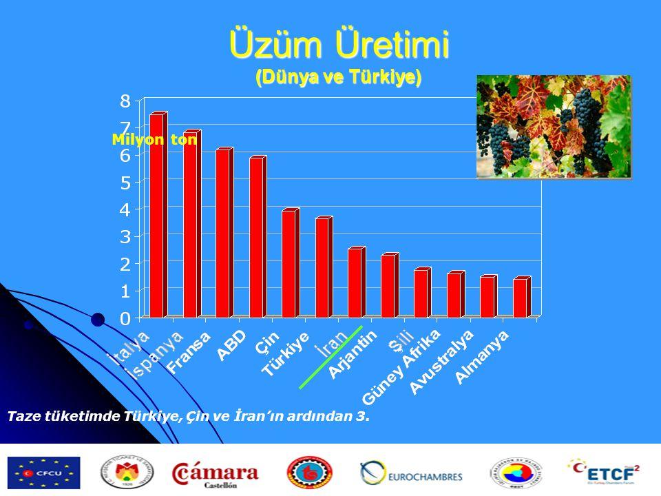 Üzüm Üretimi (Dünya ve Türkiye) Milyon ton Taze tüketimde Türkiye, Çin ve İran'ın ardından 3.