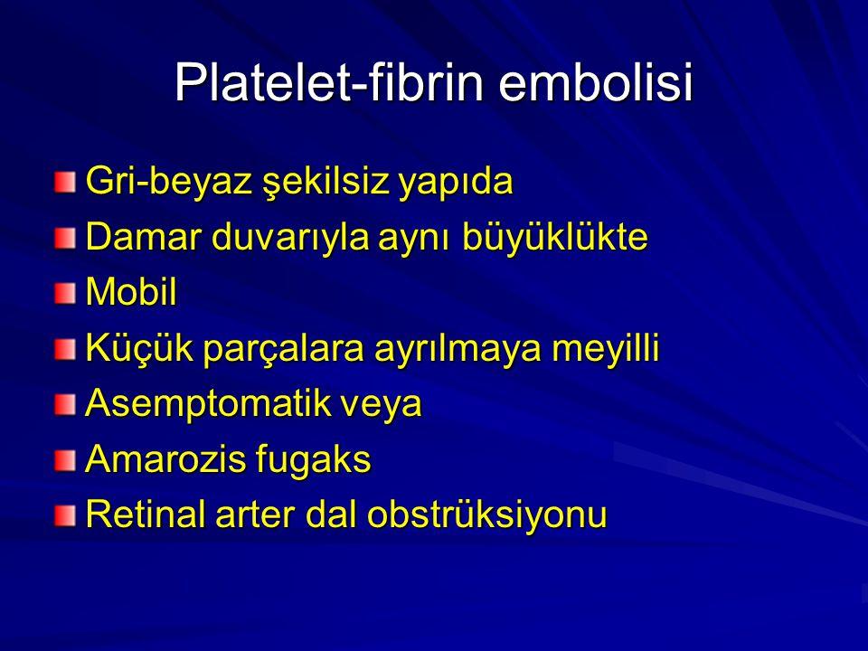 Platelet-fibrin embolisi Gri-beyaz şekilsiz yapıda Damar duvarıyla aynı büyüklükte Mobil Küçük parçalara ayrılmaya meyilli Asemptomatik veya Amarozis