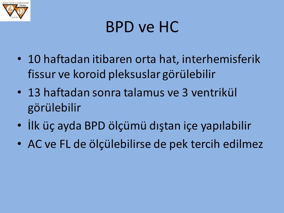 BPD ve HC 10 haftadan itibaren orta hat, interhemisferik fissur ve koroid pleksuslar görülebilir 13 haftadan sonra talamus ve 3 ventrikül görülebilir