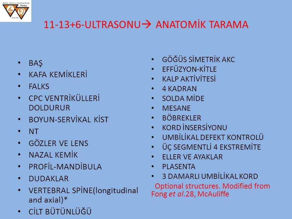 11-13+6-ULTRASONU  ANATOMİK TARAMA BAŞ KAFA KEMİKLERİ FALKS CPC VENTRİKÜLLERİ DOLDURUR BOYUN-SERVİKAL KİST NT GÖZLER VE LENS NAZAL KEMİK PROFİL-MANDİ