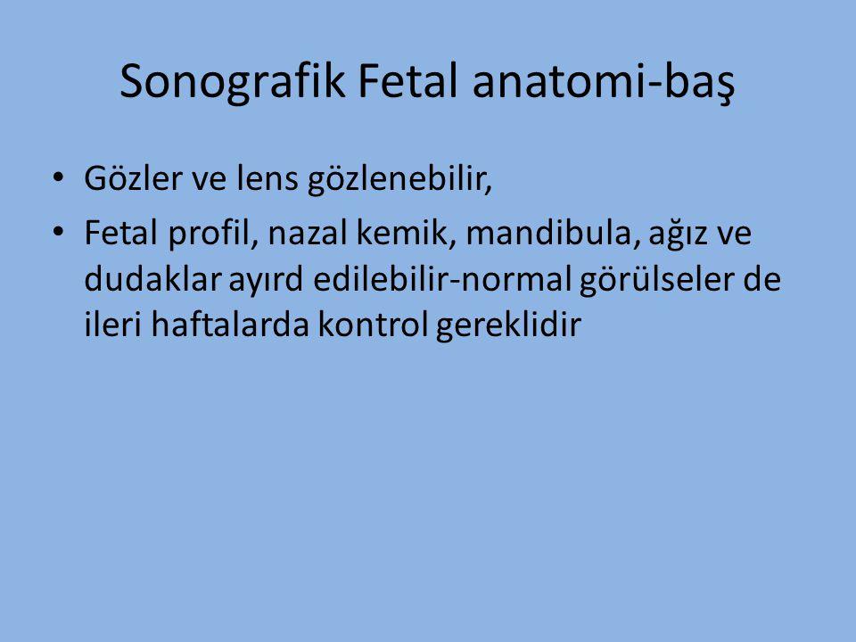 Sonografik Fetal anatomi-baş Gözler ve lens gözlenebilir, Fetal profil, nazal kemik, mandibula, ağız ve dudaklar ayırd edilebilir-normal görülseler de