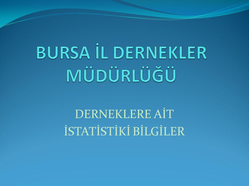 DERNEKLERE AİT İSTATİSTİKİ BİLGİLER