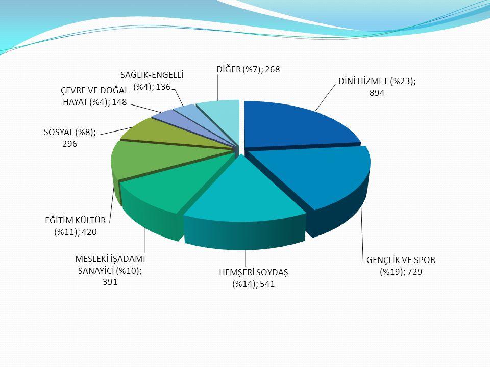 FAALİYET KONUSUNA GÖRE DERNEKLERİN ÜYE SAYILARI DİNİ HİZMET36.706 (%10) GENÇLİK VE SPOR61.987 (%17) HEMŞERİ VE SOYDAŞ99.170 (%28) MESLEKİ İŞADAMI SANAYİCİ53.857 (%15) EĞİTİM KÜLTÜR33.479 (% 9) SOSYAL18.745 (% 5) ÇEVRE VE DOĞAL HAYAT9.081 (%3) SAĞLIK-ENGELLİ12.979 (%4) DİĞER30.354 (%9) TOPLAM ÜYE SAYISI356.358