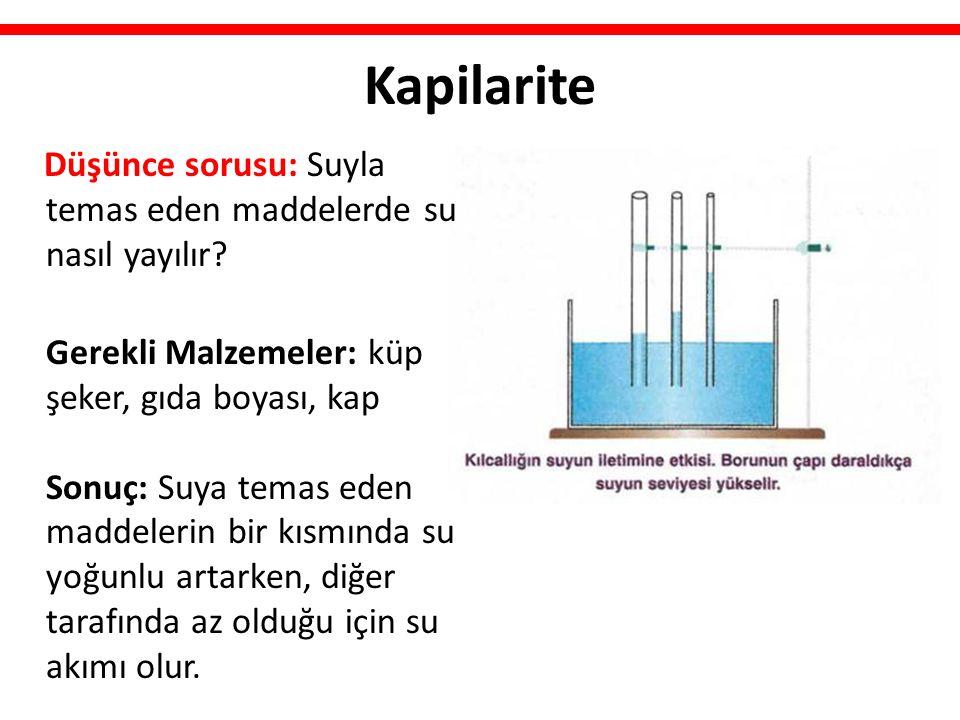 Kapilarite Düşünce sorusu: Suyla temas eden maddelerde su nasıl yayılır.
