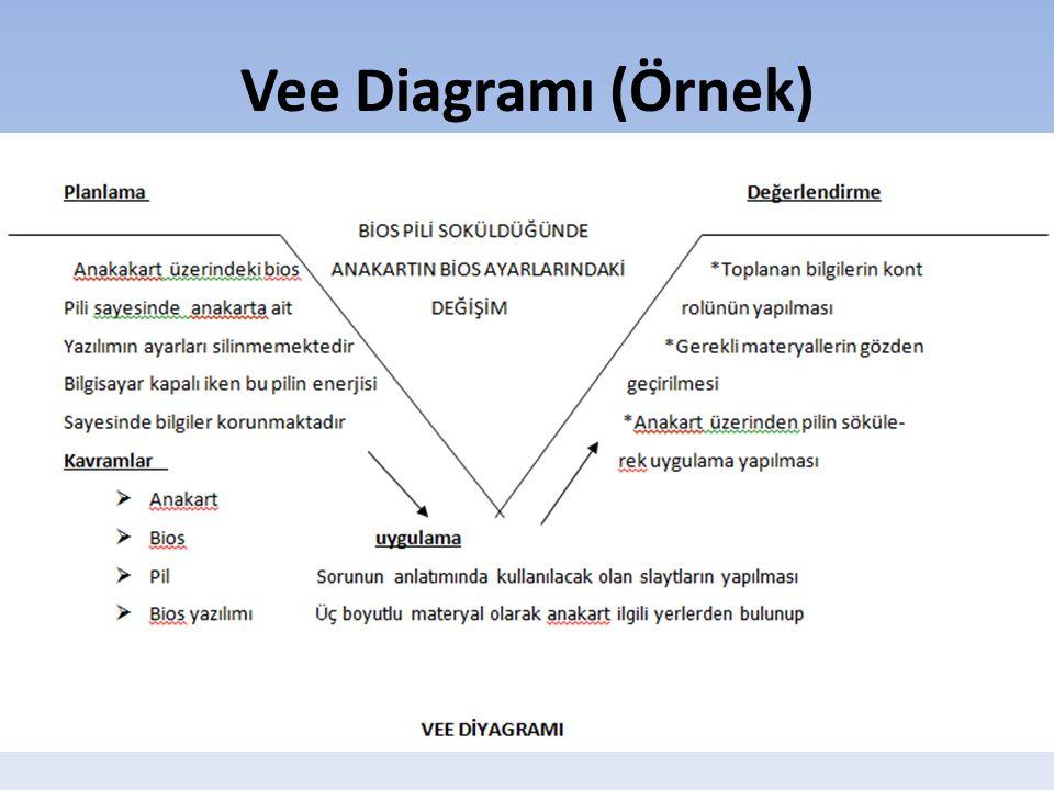 Vee Diagramı (Örnek)