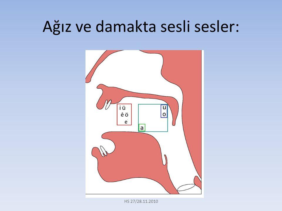 Buna göre: S- ( a, e, ı, o, u )  S S- ( ê, i, ü )  Ş Zazaca da S ve Ş harfleri Türkçe den farklı olarak sonlarına gelen sesli harflere göre farklılık gösterirler.
