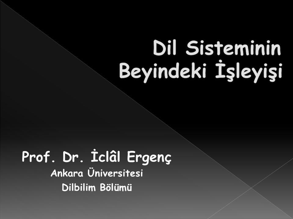 Prof. Dr. İclâl Ergenç Ankara Üniversitesi Dilbilim Bölümü