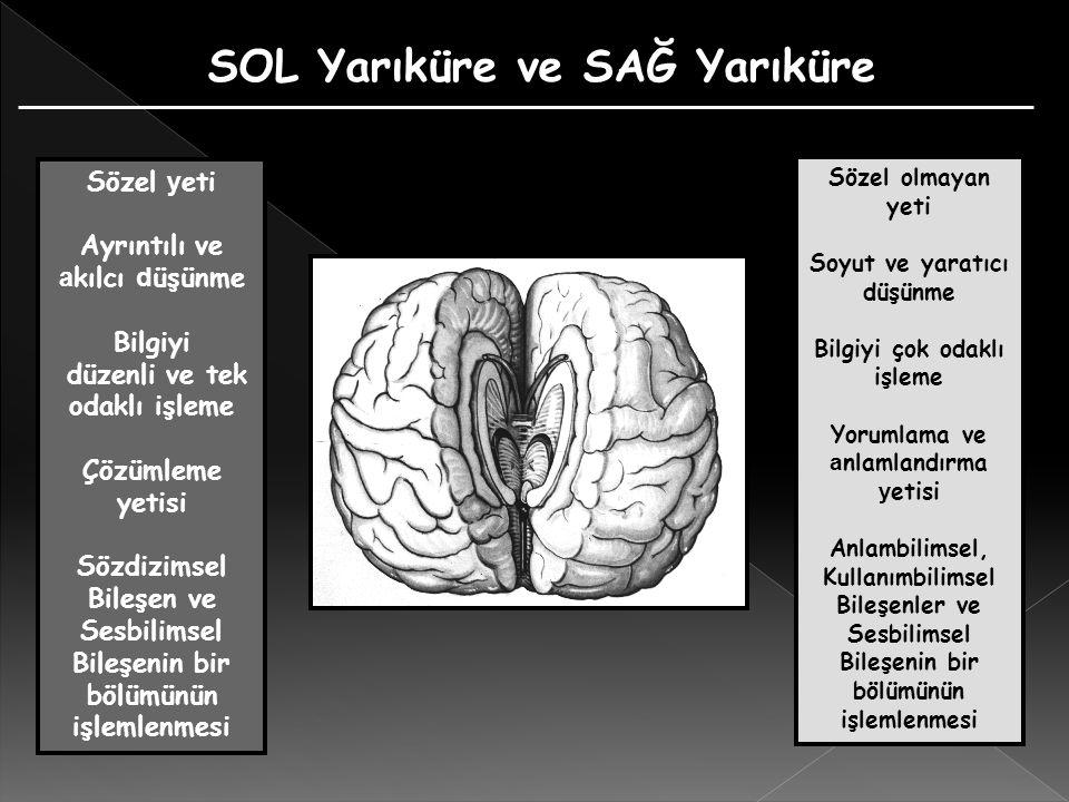 İşitsel Algı Süreci 1) Kim konuşuyor > Sesin Algılanması ve Tanımlanması 2) Ne konuşuyor > Dilin Algılanması ve Anlamlandırılması 3) Nasıl söylüyor > Konuşmacının Ses Tonundaki Duyguduruma Bağlı Bürünsel Anlamın Çözümlenmesi İşitsel girdinin çözümlenmesi sürecinde, beynin ayrı bölgelerinde çalışan üç farklı işlemcinin ulaştıkları bulgular, anlamlandırma sürecinin de temelini oluşturmaktadır.