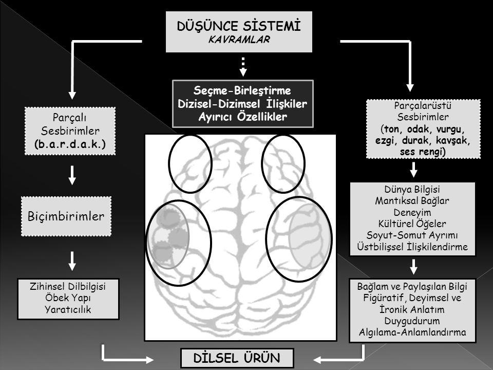 Türkiyede Yapılan Araştırmalar – ŞİZOFRENİ Çalışmanın AMACI: Şizofreni tanısı almış bireylere ve sağlıklı bireylere ait yazılı metinlerin dilbilimsel bakış açısıyla karşılaştırmalı olarak incelenmesi.