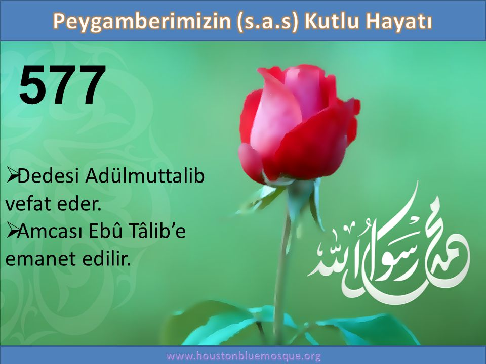 577  Dedesi Adülmuttalib vefat eder.  Amcası Ebû Tâlib'e emanet edilir.