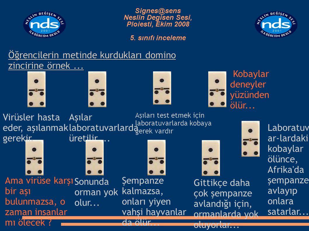 Öğrencilerin metinde kurdukları domino zincirine örnek...