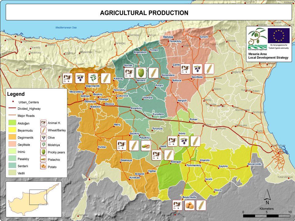 Kırsal Kalkınma Destek Ekibi EU Turkish Cypriot community support 77 Tarım(4):  Sığır çiftlikleri, genellikle orta ve büyük ölçeklidir (50-100'den fazla)  İnek sütü; %44.6, koyun/keçi sütü: %32.4  Birkaç soğuk zincir sistemi bulunmaktadır  Sığır eti: %44 koyun/keçi eti: %34.8
