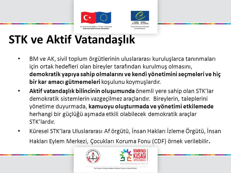 STK ve Aktif Vatandaşlık BM ve AK, sivil toplum örgütlerinin uluslararası kuruluşlarca tanınmaları için ortak hedefleri olan bireyler tarafından kurul