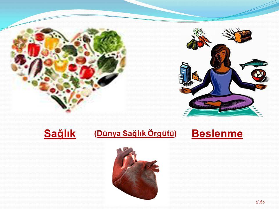Sağlık (Dünya Sağlık Örgütü) Beslenme 2\60