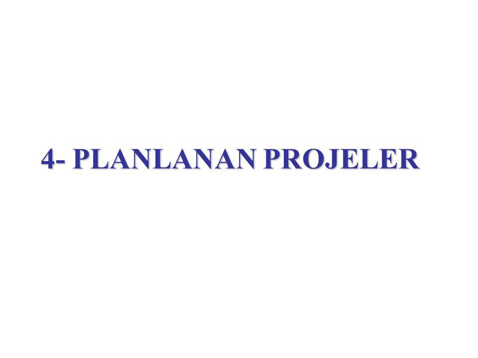 4- PLANLANAN PROJELER