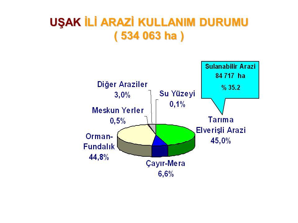 UŞAK İLİ ARAZİ KULLANIM DURUMU ( 534 063 ha )
