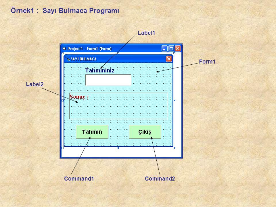 Örnek1 : Sayı Bulmaca Programı Form1 Label1 Label2 Command1Command2
