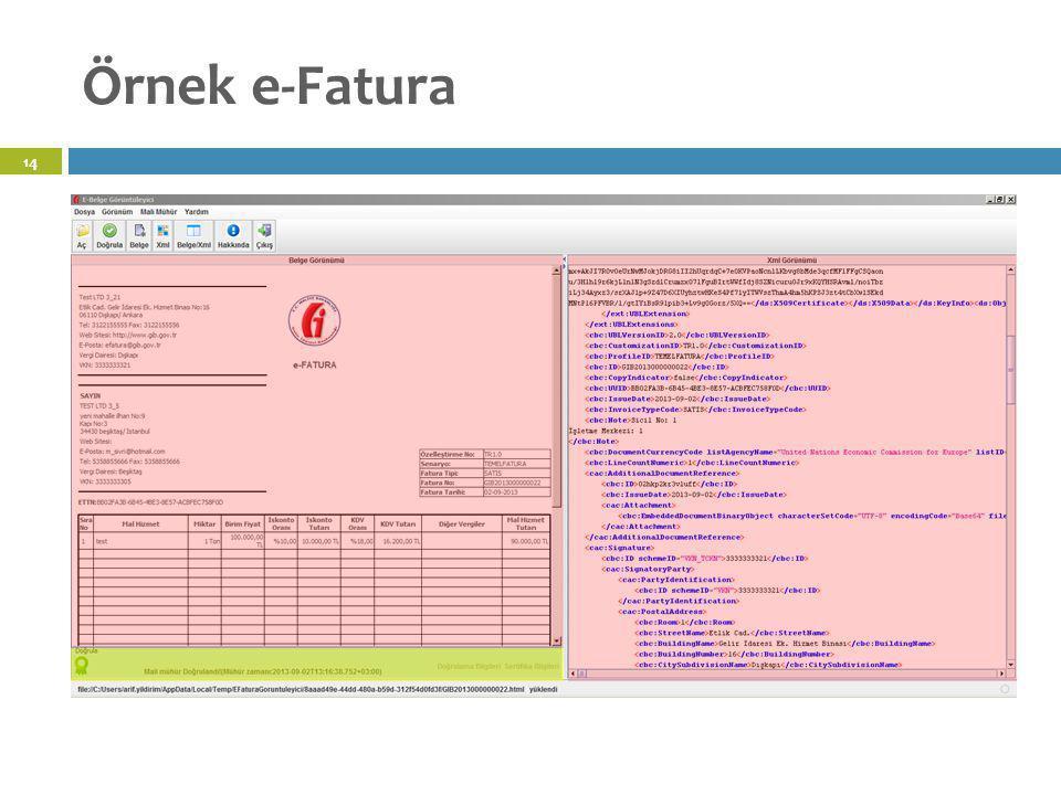 Örnek e-Fatura 14