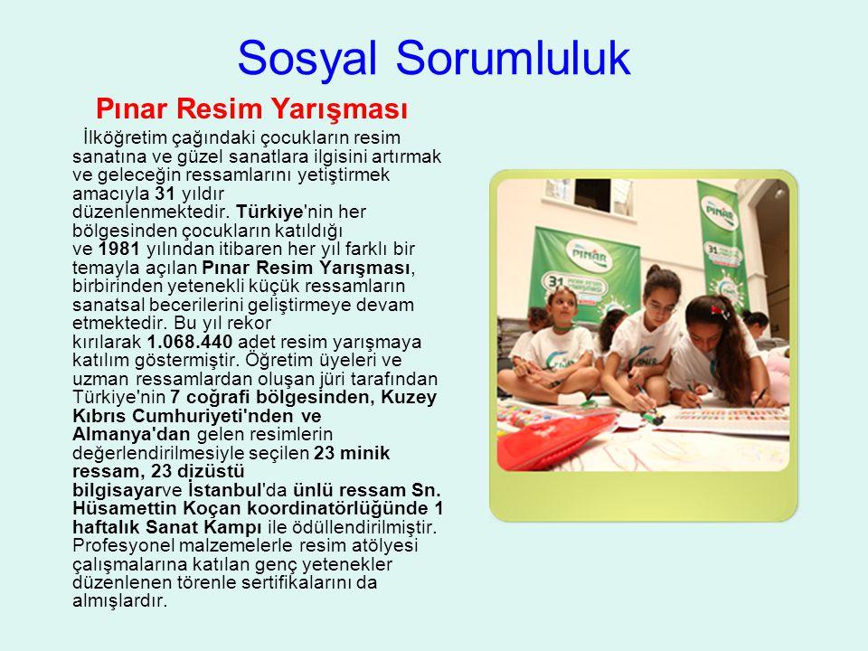 Sosyal Sorumluluk Pınar Resim Yarışması İlköğretim çağındaki çocukların resim sanatına ve güzel sanatlara ilgisini artırmak ve geleceğin ressamlarını yetiştirmek amacıyla 31 yıldır düzenlenmektedir.