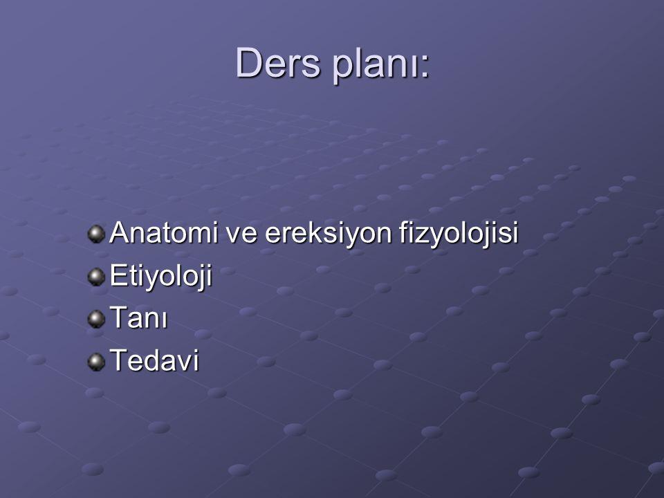 Ders planı: Anatomi ve ereksiyon fizyolojisi EtiyolojiTanıTedavi