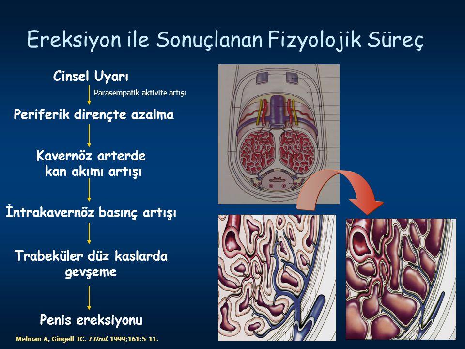 Ereksiyon ile Sonuçlanan Fizyolojik Süreç Melman A, Gingell JC. J Urol. 1999;161:5-11. Cinsel Uyarı Periferik dirençte azalma Kavernöz arterde kan akı