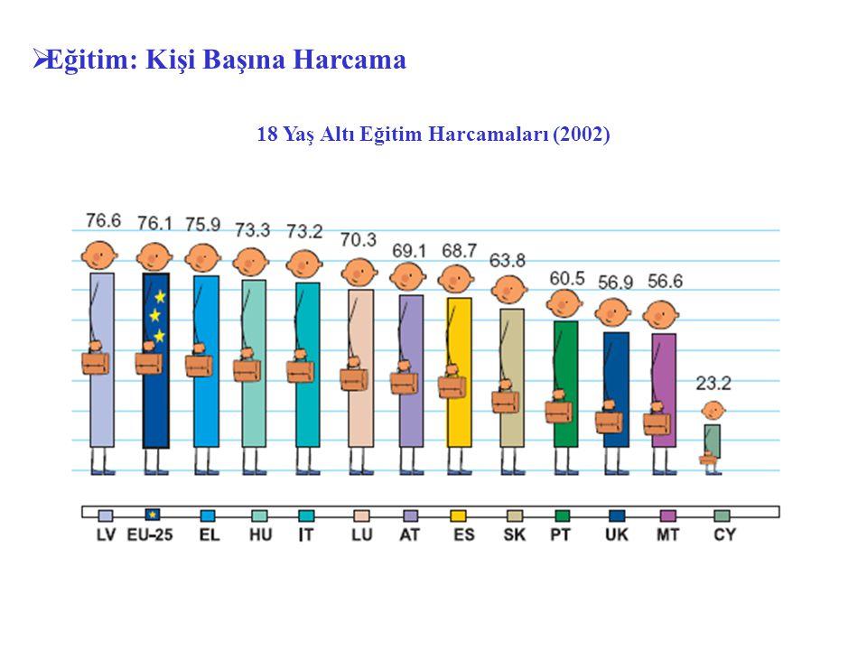 18 Yaş Altı Eğitim Harcamaları (2002)