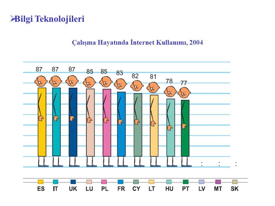  Bilgi Teknolojileri Çalışma Hayatında İnternet Kullanımı, 2004