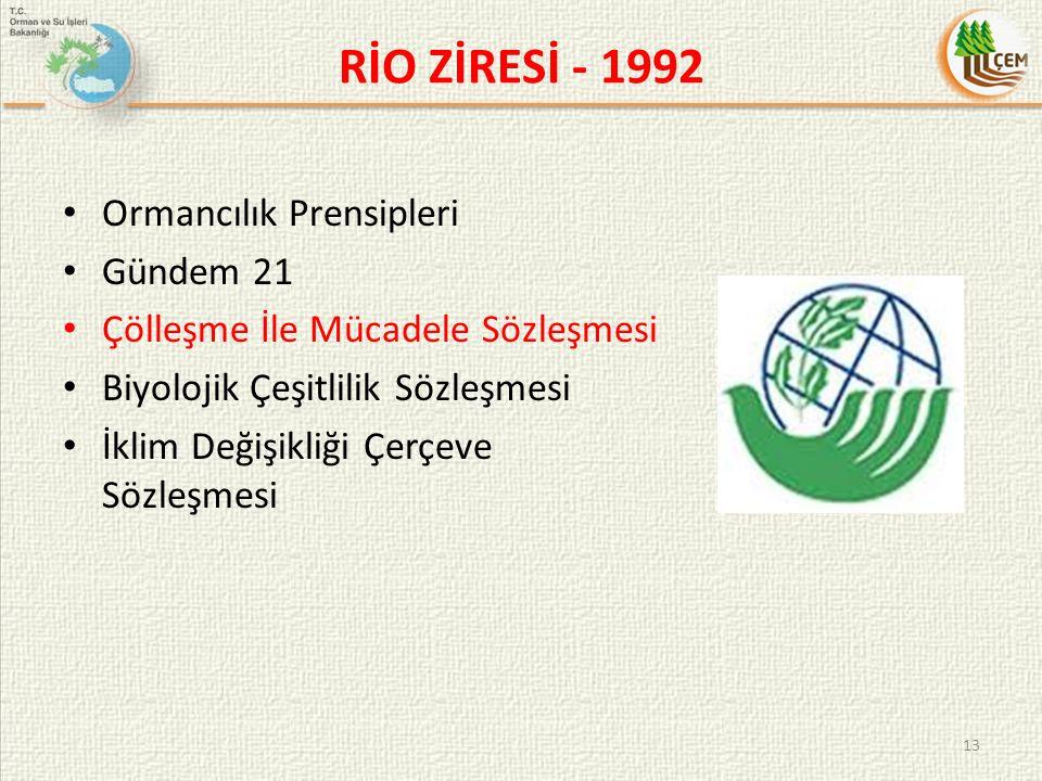 RİO ZİRESİ - 1992 Ormancılık Prensipleri Gündem 21 Çölleşme İle Mücadele Sözleşmesi Biyolojik Çeşitlilik Sözleşmesi İklim Değişikliği Çerçeve Sözleşme
