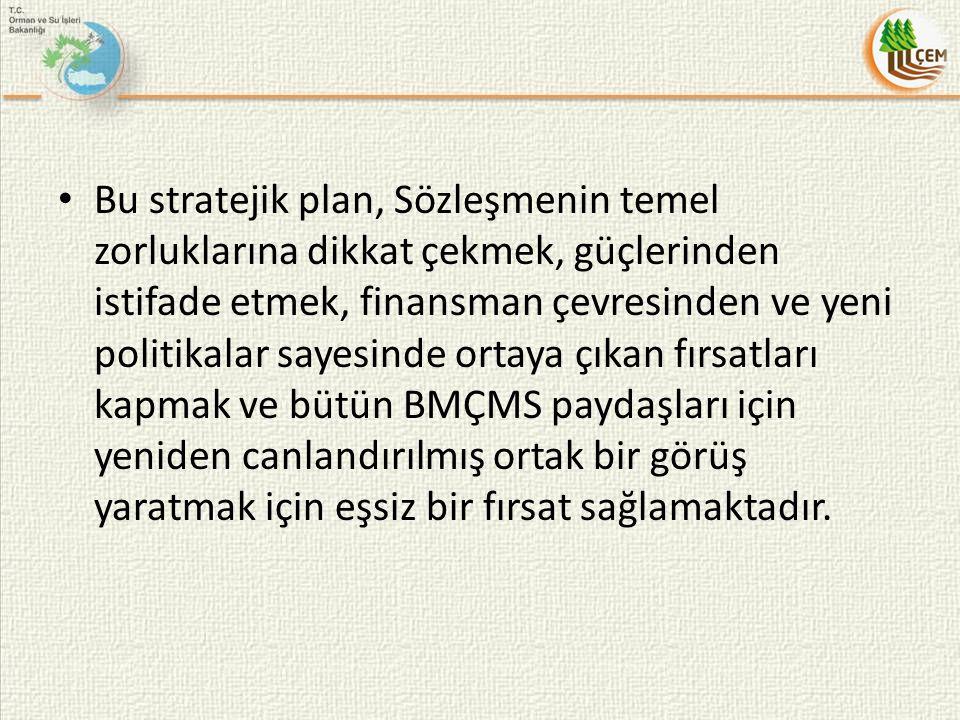 Bu stratejik plan, Sözleşmenin temel zorluklarına dikkat çekmek, güçlerinden istifade etmek, finansman çevresinden ve yeni politikalar sayesinde ortay
