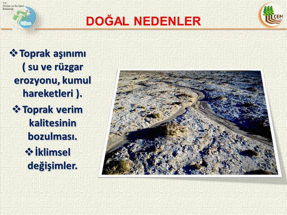 31 Ekim – 4 Kasım 2011 tarihleri arasında Tohum ve Fidanlık Üretim Tekniklerinin Geliştirilmesi eğitimi Eskişehir ve Manisa'da yapılmıştır