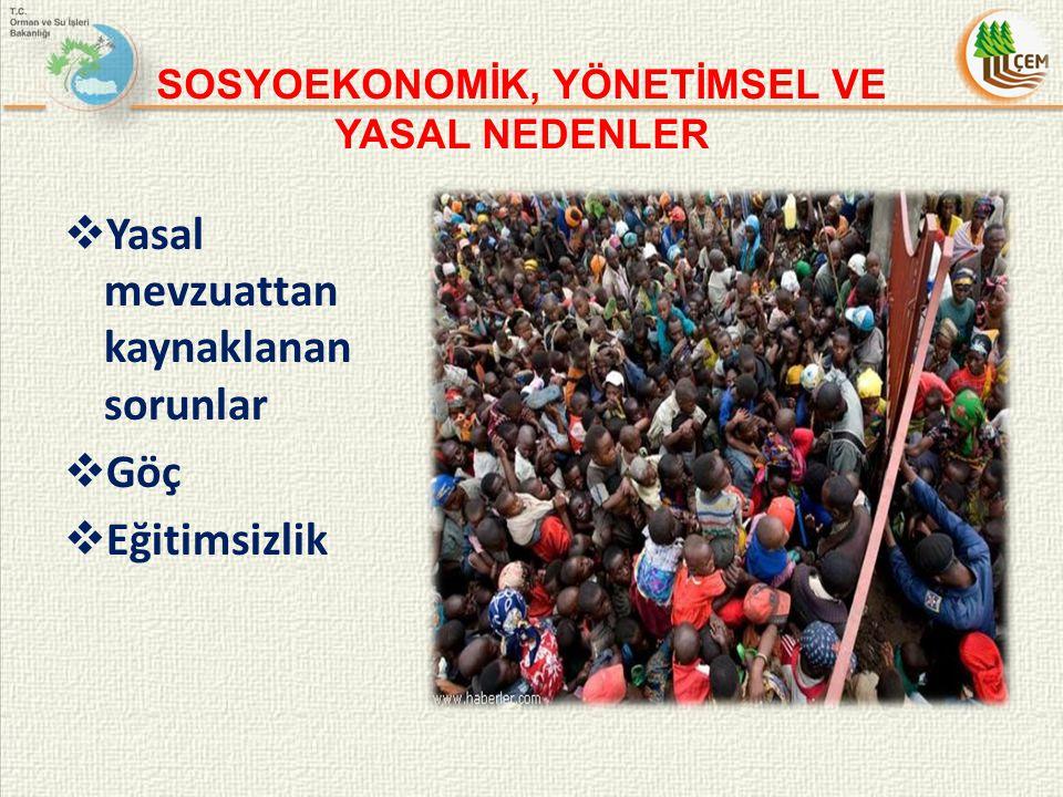 2012 yılında Ankara ve Konya'da Çölleşme İle Mücadelede STK'ların Rolü konulu çalıştay düzenlenmiştir.