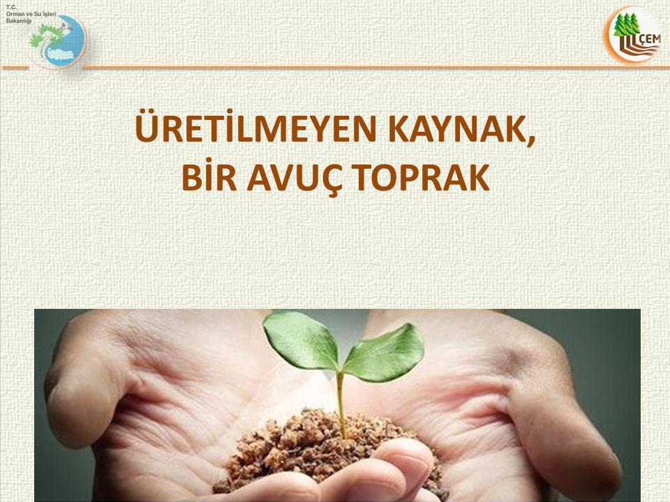 AİGK/CICA ULUSLARARASI ÇÖLLEŞME İLE MÜCADELE ARAŞTIRMA VE EĞİTİM MERKEZİ 2010-2014 yılları arasında Türkiye Dönem Başkanı 6-7 Eylül 2011 tarihinde Moğolistan'da AİGK/CICA Çölleşme ile Mücadele 1.