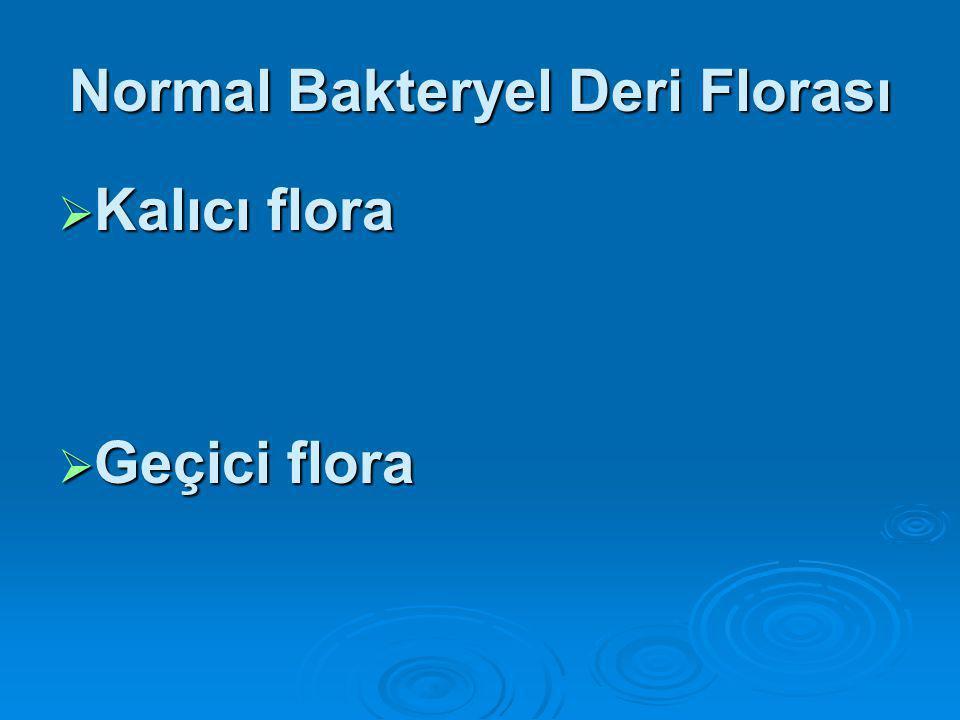 Normal Bakteryel Deri Florası  Sağlık personelinde geçici flora etkenleri sıklıkla hastane infeksiyonlarına neden olan bakterilerdir.