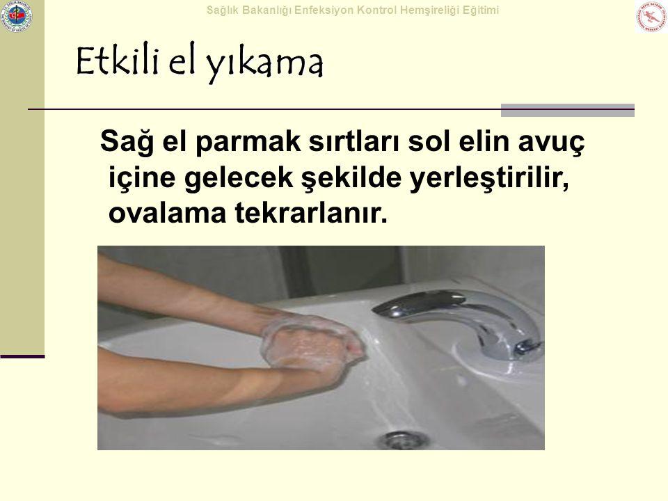 Sağlık Bakanlığı Enfeksiyon Kontrol Hemşireliği Eğitimi Etkili el yıkama Sağ el parmak sırtları sol elin avuç içine gelecek şekilde yerleştirilir, ova