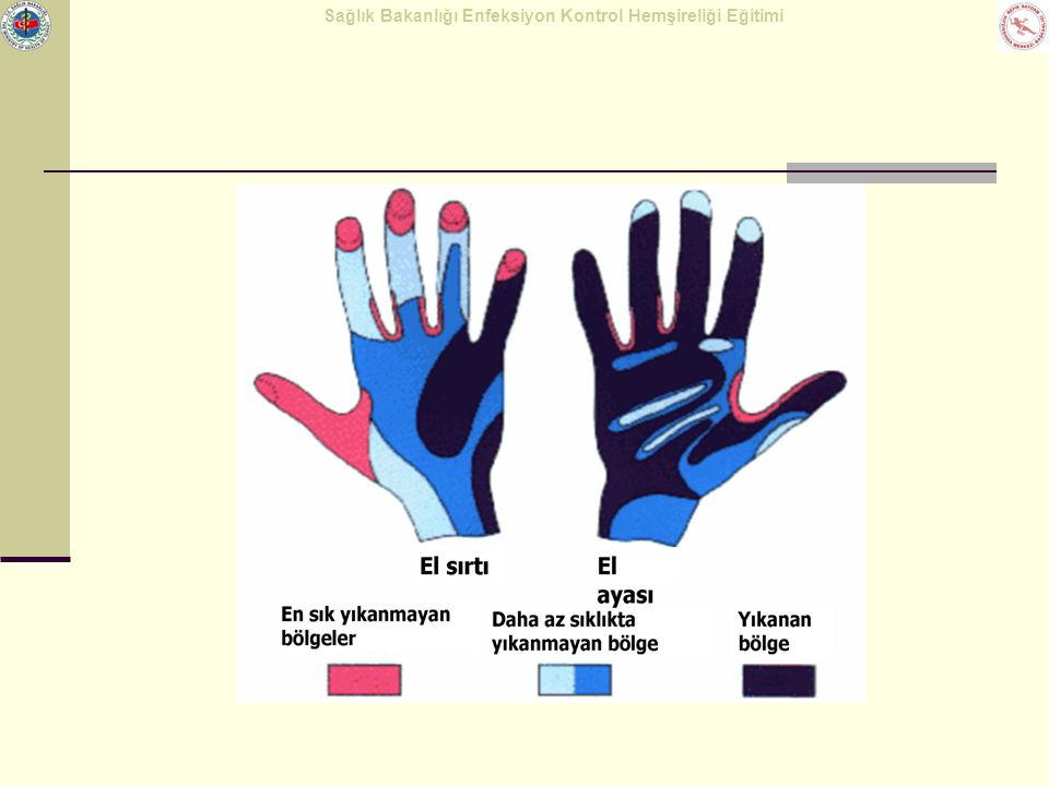 Sağlık Bakanlığı Enfeksiyon Kontrol Hemşireliği Eğitimi Etkili el yıkama Aynı hareketler sol el parmak uçları içinde yapılır