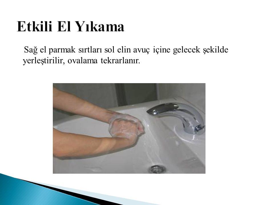 Sağ el parmak sırtları sol elin avuç içine gelecek şekilde yerleştirilir, ovalama tekrarlanır.