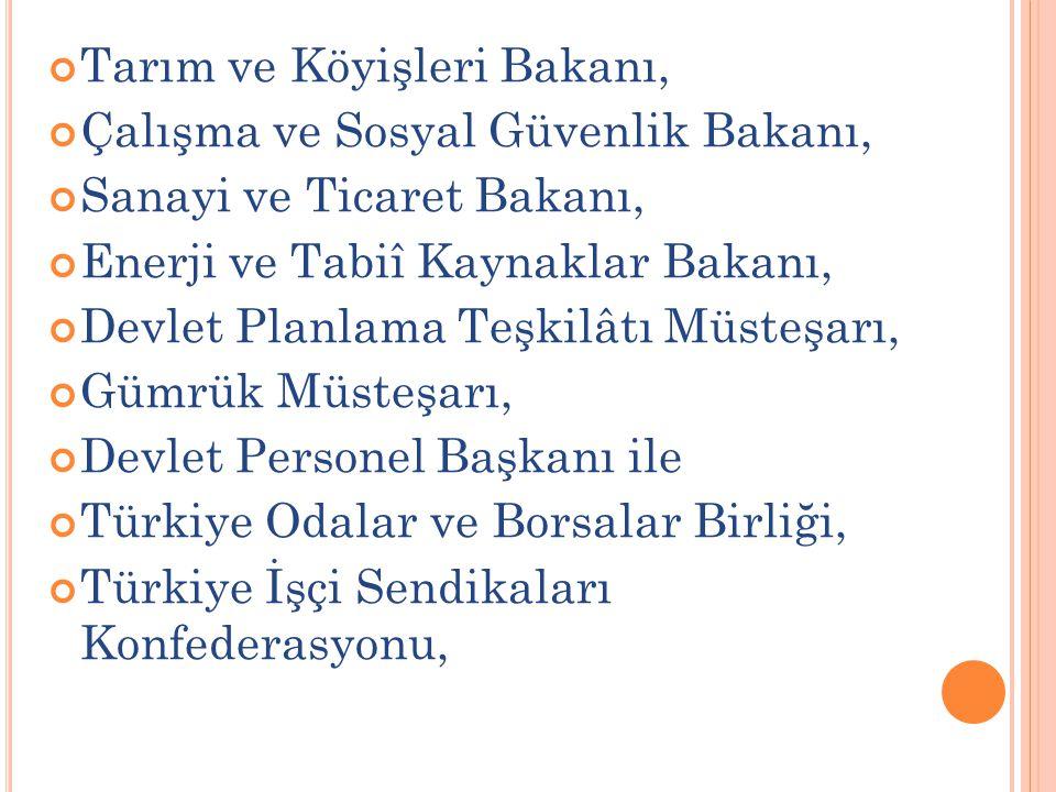 Türkiye İşveren Sendikaları Konfederasyonu, Türkiye Esnaf ve Sanatkârlar Konfederasyonu, Türkiye Ziraat Odaları Birliği, Hak İşçi Sendikaları Konfederasyonu, Devrimci İşçi Sendikaları Konfederasyonunu temsil eden üçer temsilciden ve Başbakan tarafından belirlenecek diğer Hükümet temsilcileri ve sivil toplum kuruluşları temsilcileri ile kamu görevlilerinden oluşur.